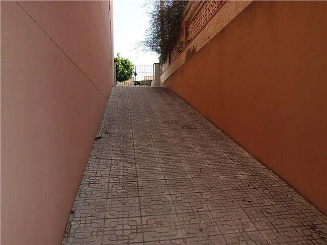 Local comercial en alquiler en Ejido (El) - 306327668