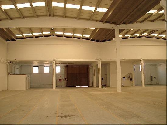 Planta baja - Nave industrial en alquiler en polígono Can Calderón, Casablanca en Sant Boi de Llobregat - 201692637