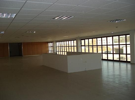 Detalles - Nave industrial en alquiler en polígono Can Calderón, Casablanca en Sant Boi de Llobregat - 201692643