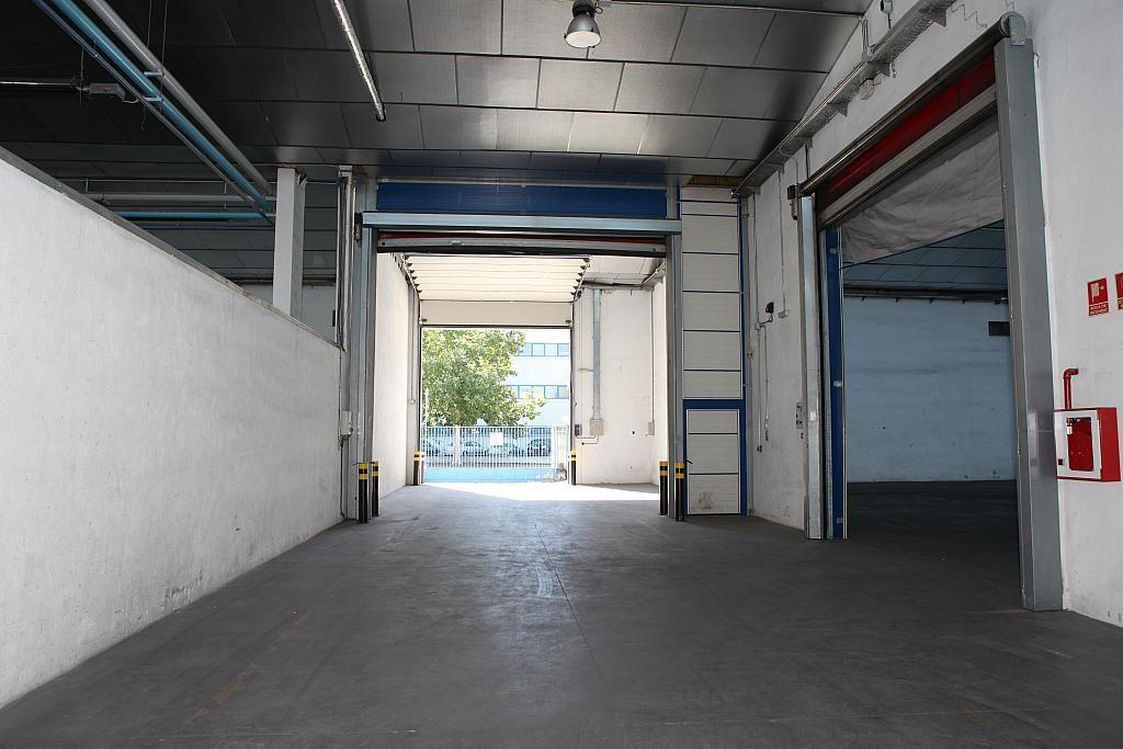 Planta baja - Nave industrial en alquiler en calle Sierra Morena, Parque Henares en San Fernando de Henares - 269727879