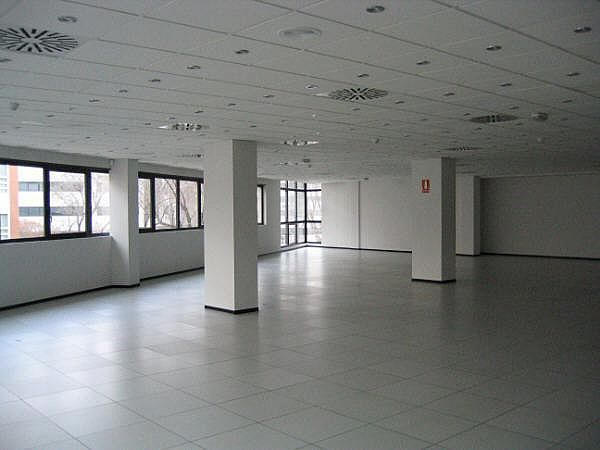 Oficina - Oficina en alquiler en calle Albasanz, Canillejas en Madrid - 138548781