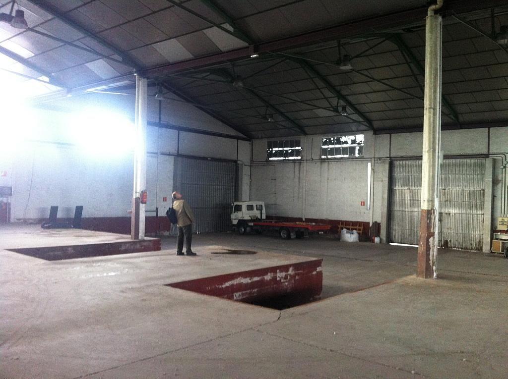 Planta baja - Nave industrial en alquiler en calle Puerto de Cotos, Sur-Este en Móstoles - 228797400