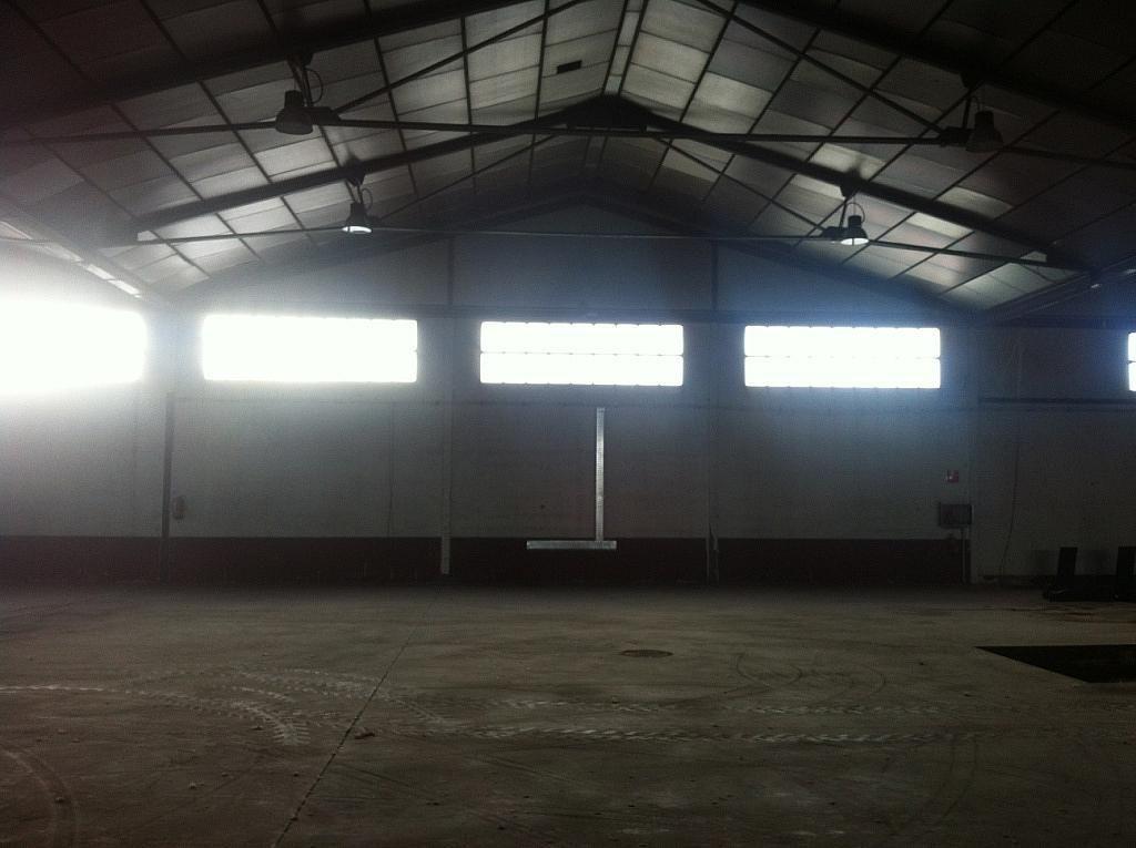 Planta baja - Nave industrial en alquiler en calle Puerto de Cotos, Sur-Este en Móstoles - 228797402