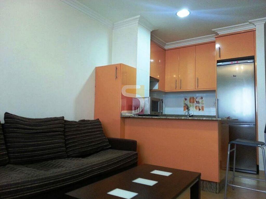 Foto del inmueble - Estudio en alquiler en Castrelos-Sardoma en Vigo - 263263489