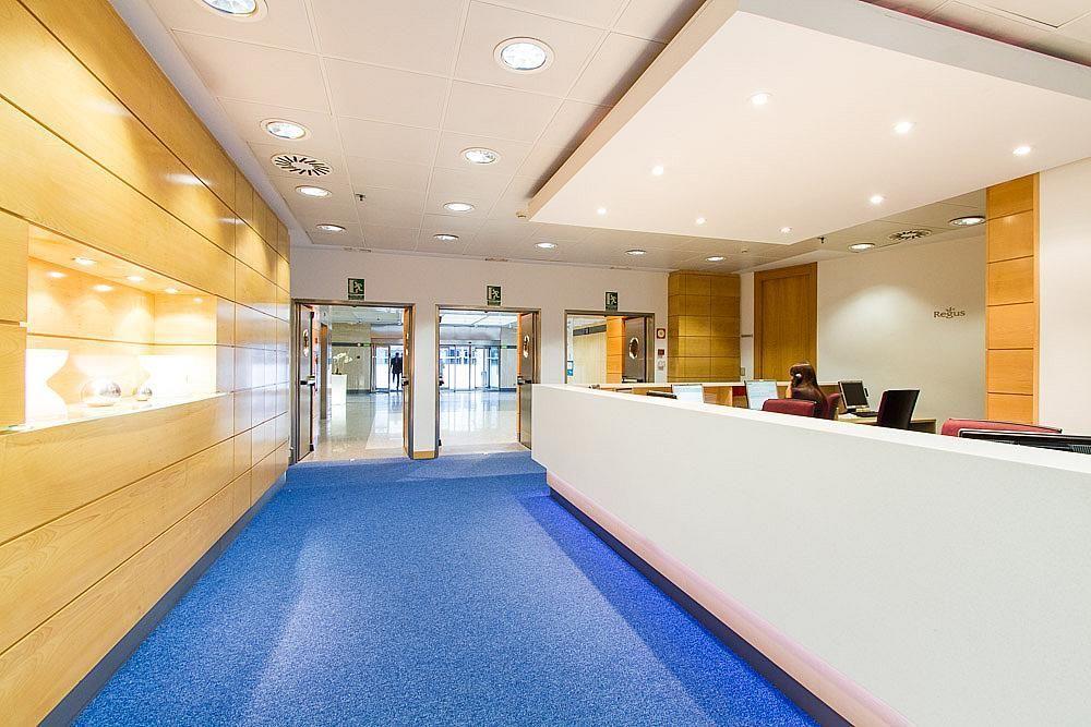 Oficina en alquiler en calle Ribera del Loira, Aeropuerto en Madrid - 142807639