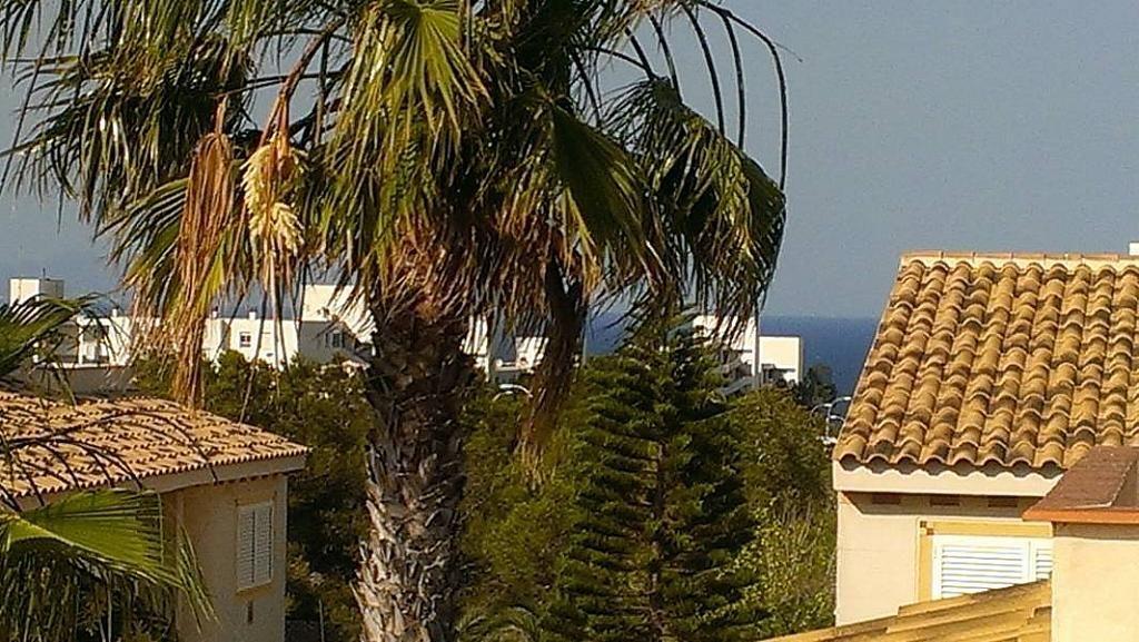 Foto - Bungalow en alquiler en calle Gran Alacant, Gran Alacant en Santa Pola - 182090968