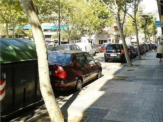 Local en alquiler en San José en Zaragoza - 261473721