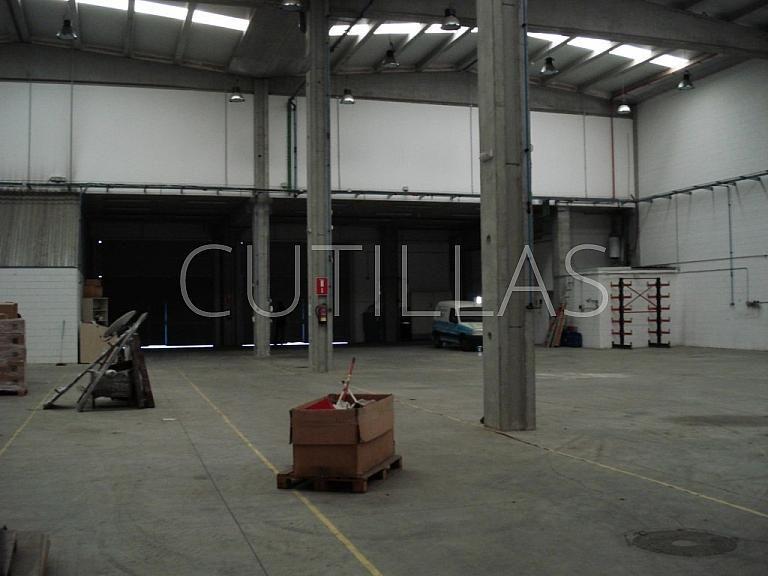 Imagen 5 - Nave industrial en alquiler en Sant Andreu de la Barca - 261854521