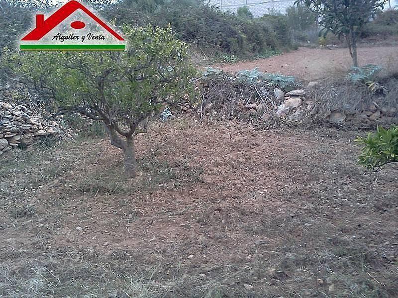 Foto1 - Casa rural en alquiler en Alcanar - 222761366