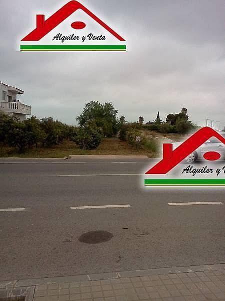 Foto2 - Casa rural en alquiler en Alcanar - 222761369