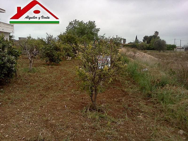 Foto3 - Casa rural en alquiler en Alcanar - 222761372