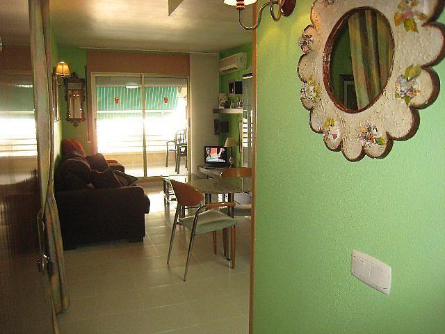 Comedor - Piso en alquiler en calle P Miramar, Centro en Torredembarra - 131363025