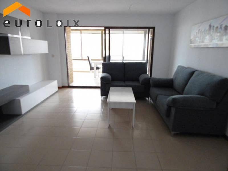 Foto - Apartamento en venta en calle Poniente, Poniente en Benidorm - 267852119