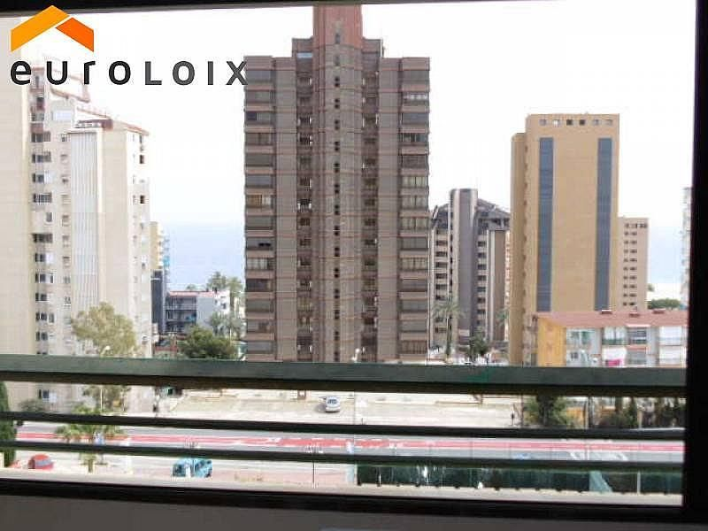 Foto - Apartamento en venta en calle Poniente, Poniente en Benidorm - 267852137