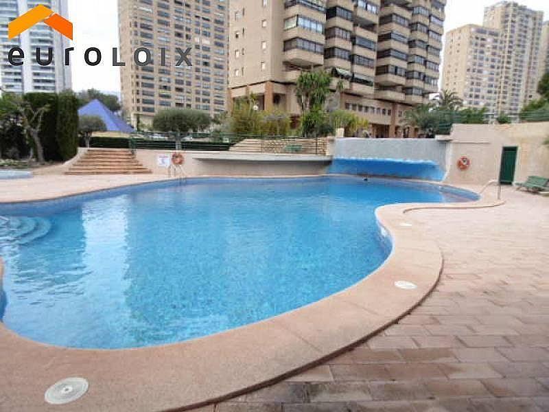 Foto - Apartamento en venta en calle Poniente, Poniente en Benidorm - 267852143