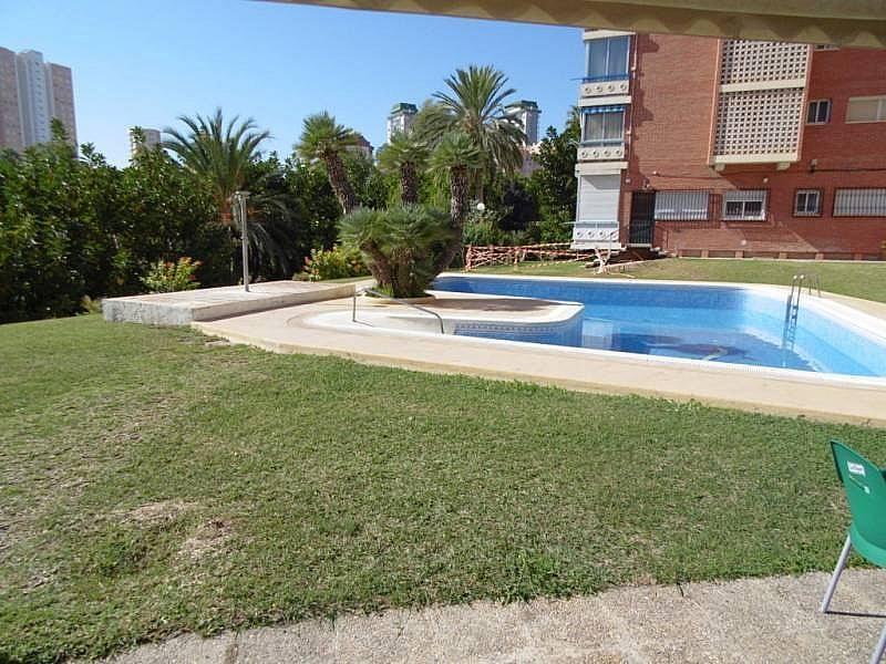 Foto - Apartamento en venta en calle Poniente, Poniente en Benidorm - 224345830