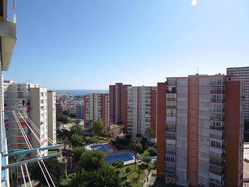 Foto - Apartamento en venta en calle Poniente, Poniente en Benidorm - 224345836