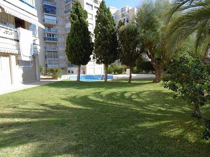 Foto - Apartamento en venta en calle Poniente, Poniente en Benidorm - 224345857