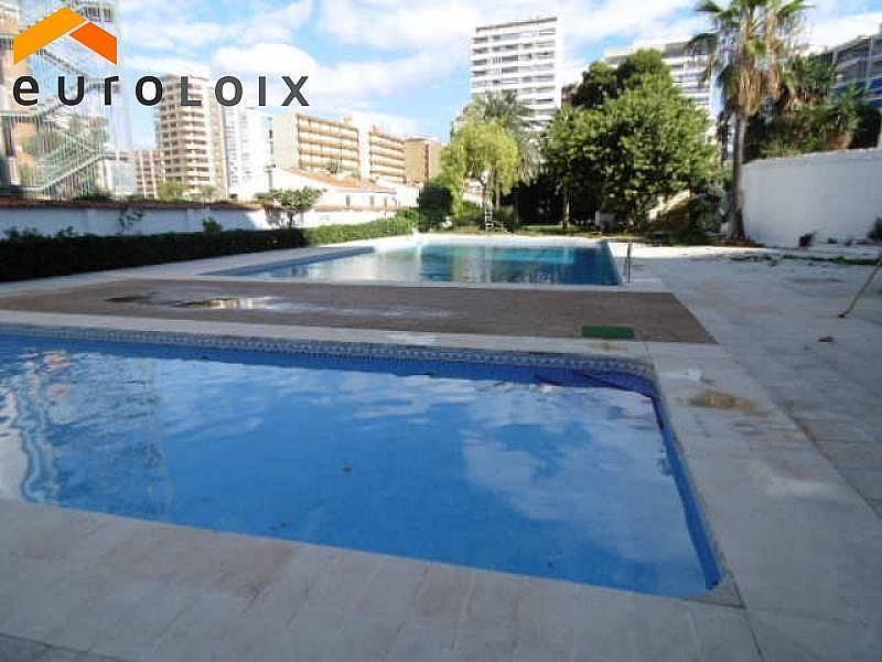 Foto - Apartamento en venta en calle Rincon de Loix, Rincon de Loix en Benidorm - 214689753