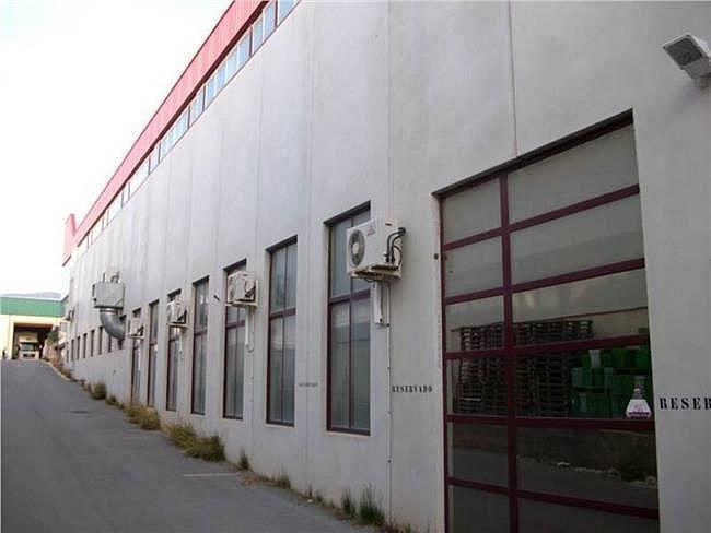 Nave industrial en alquiler en Ibi - 360552433
