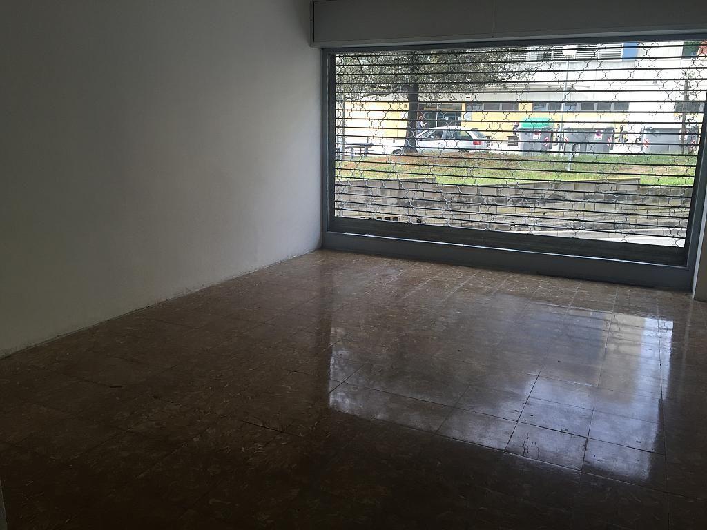 Planta baja - Local comercial en alquiler en calle Santiago Rusiñol, Singuerlín en Santa Coloma de Gramanet - 280655827
