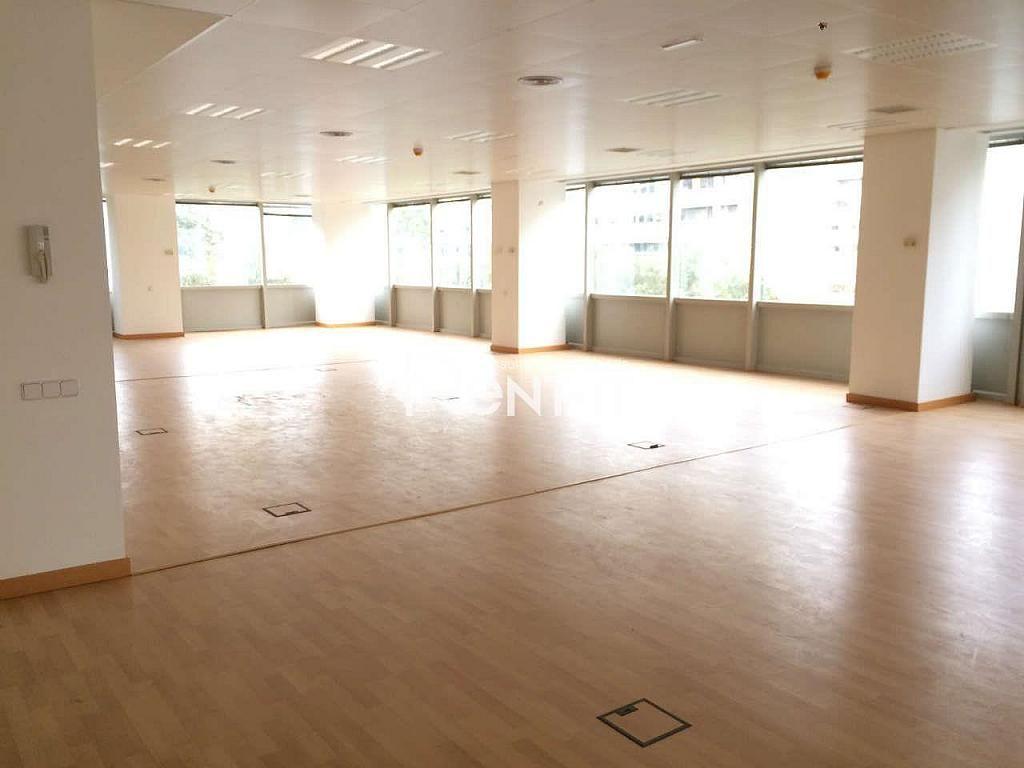 IMG_6231.JPG - Oficina en alquiler en Sants en Barcelona - 288844651
