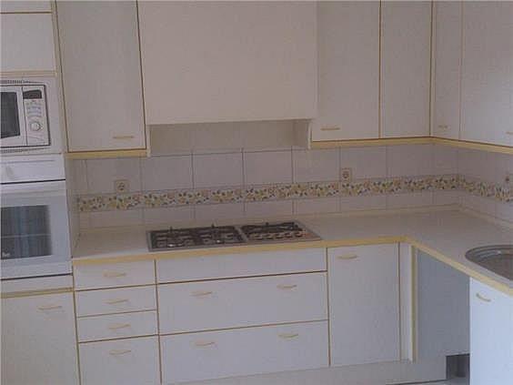 Casa en alquiler en calle Antonio Larrazabal, Piovera-Conde Orgaz en Madrid - 296278486