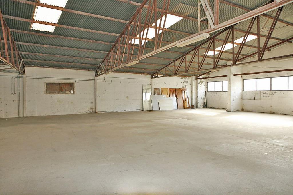 Nave industrial en alquiler en calle Apolo, Nueva Torrevieja - Aguas Nuevas en Torrevieja - 282781599