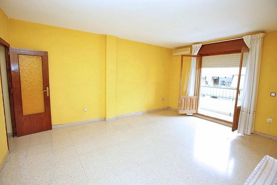 Alquiler de pisos de particulares en la ciudad de orihuela for Alquiler de pisos en sevilla centro particulares