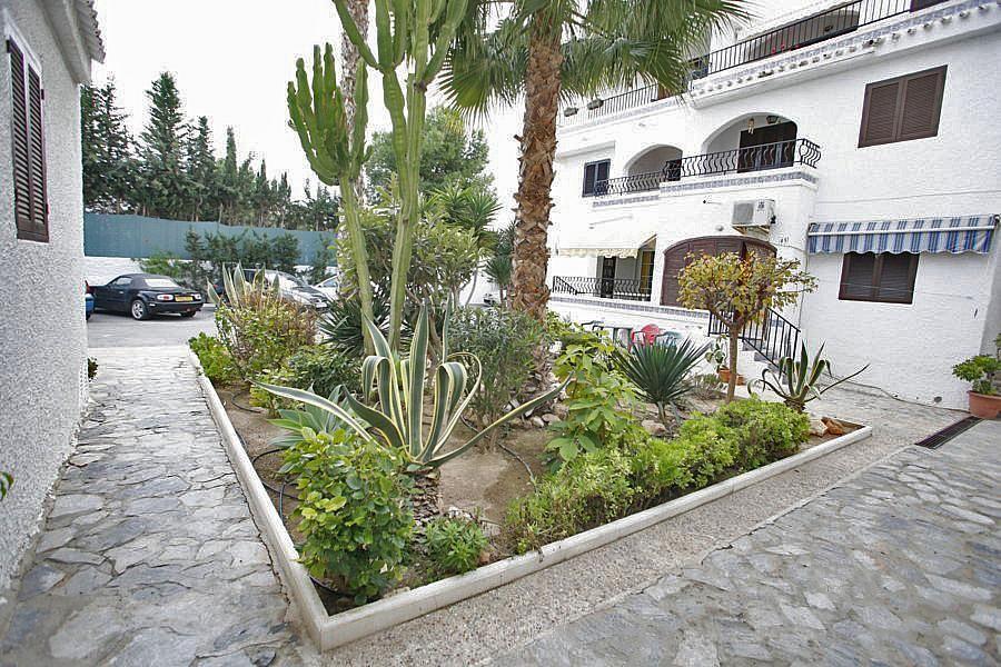 Apartamento en alquiler en calle Violeta, Zenia, La - 239446095