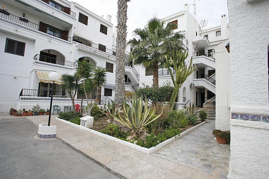 Apartamento en alquiler en calle Violeta, Zenia, La - 239446101