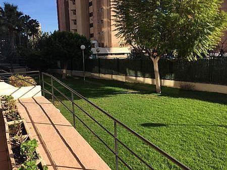 9 - Apartamento en venta en Benidorm - 267890734