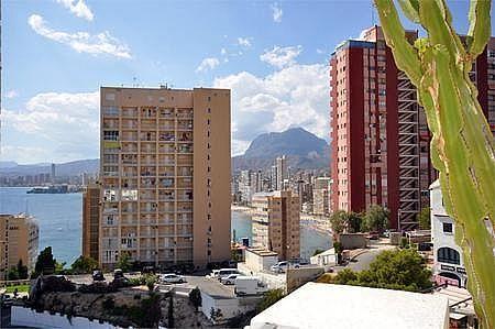 12 - Apartamento en venta en Benidorm - 183688198