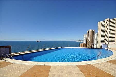14 - Apartamento en venta en Benidorm - 183688204