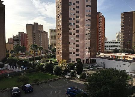 16 - Apartamento en venta en Benidorm - 235569931