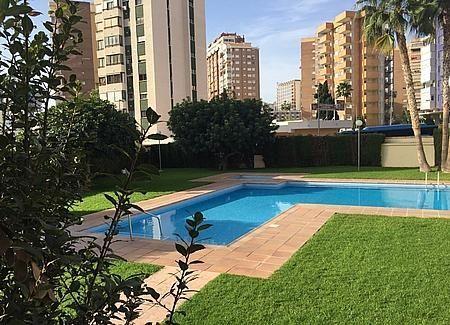 17 - Apartamento en venta en Benidorm - 235569934