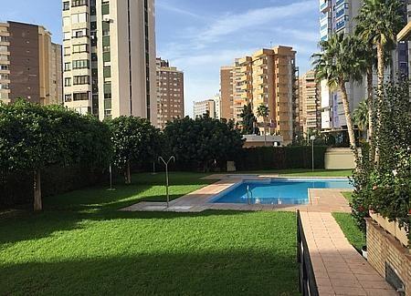 20 - Apartamento en venta en Benidorm - 235569943