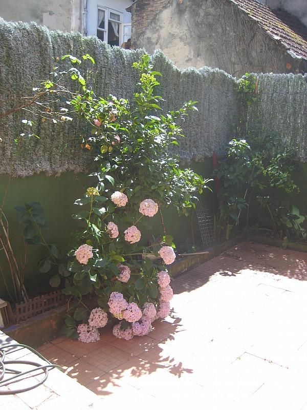 Casa en alquiler en calle Cataluña, Calvario-Santa Rita-Casablanca en Vigo - 294057903