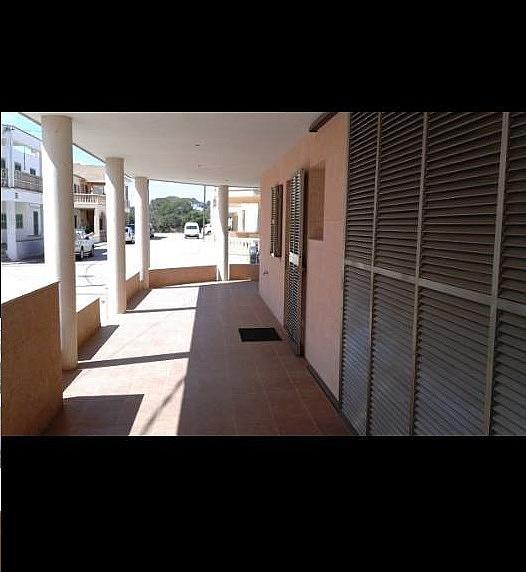 Piso en alquiler en calle Estrella de Mar, Rapita (Sa) - 316013025