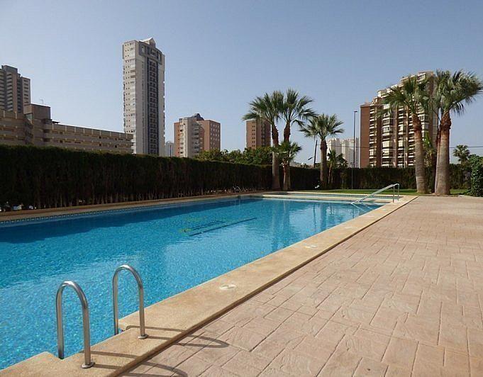 - Apartamento en venta en calle Avinguda de la Vila Joyosa, Benidorm - 247496984