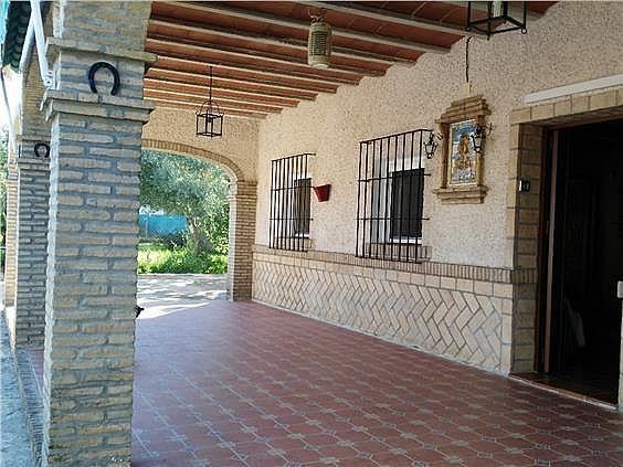 Casa en alquiler en Coria del Río - 309970464