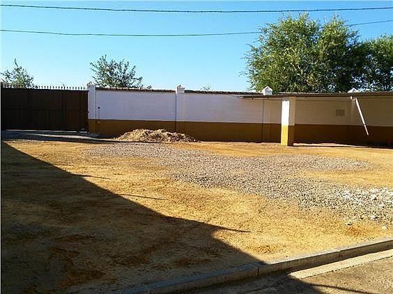 Casa en alquiler en Coria del Río - 309970485