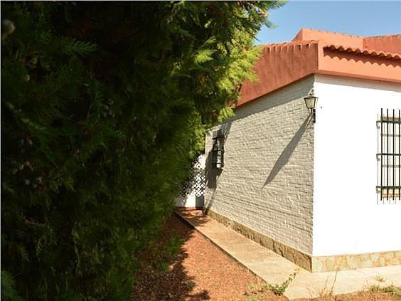 Casa en alquiler en Mairena del Alcor - 329529482