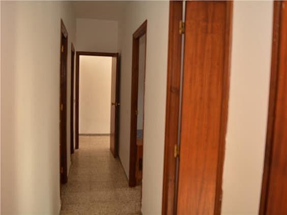 Casa en alquiler en Mairena del Alcor - 329872352