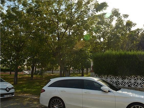 Casa en alquiler en Mairena del Alcor - 329872361