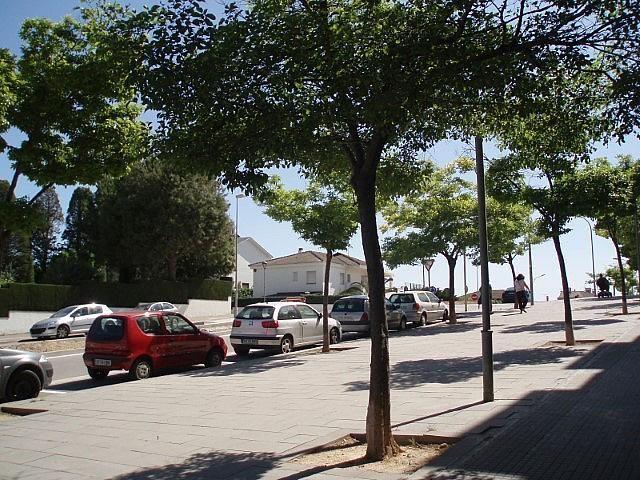 Locals sansa 006.JPG - Local comercial en alquiler en Sant Sadurní d´Anoia - 195079714