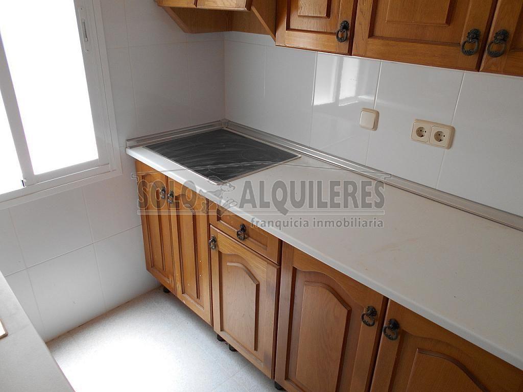 DSCN0239.JPG - Piso en alquiler en calle General Martin Cerezo, Carabanchel en Madrid - 243500195