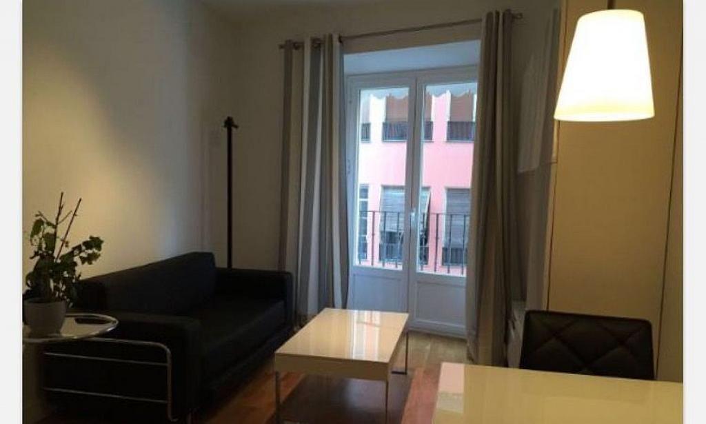 Piso en alquiler en calle Concepción Jerónima, Embajadores-Lavapiés en Madrid - 294060891