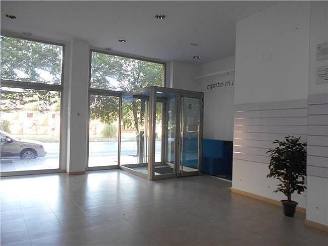 Local comercial en alquiler en María Auxiliadora en Badajoz - 341933654