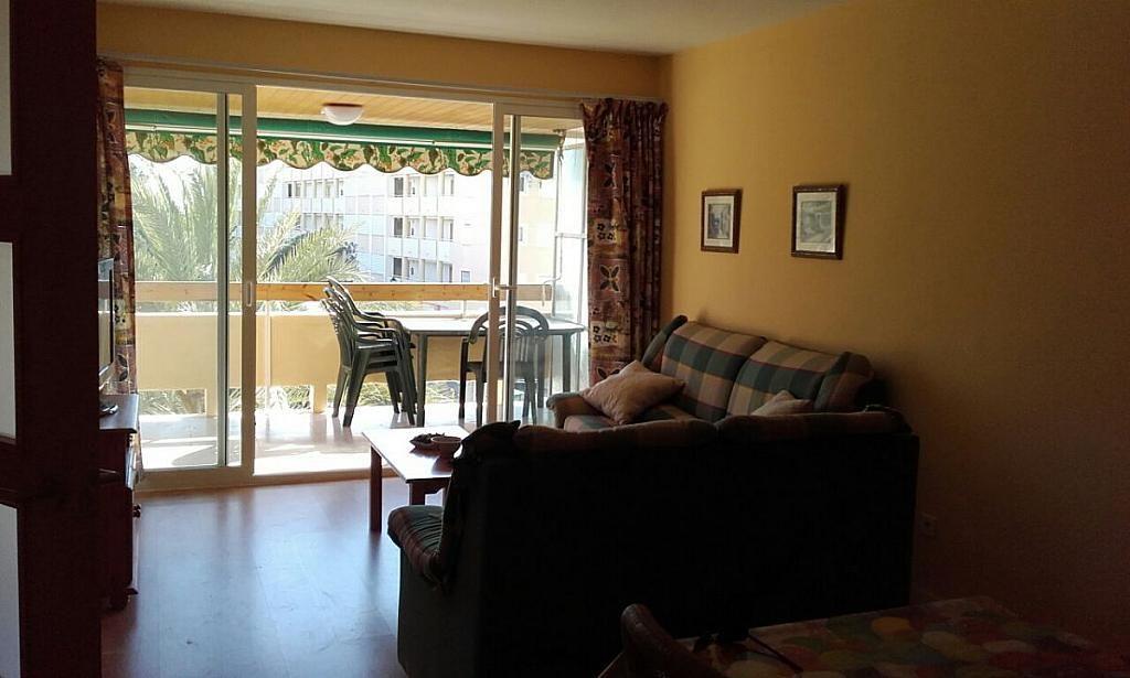 Foto 10 - Apartamento en alquiler en Campello (el) - 241881635